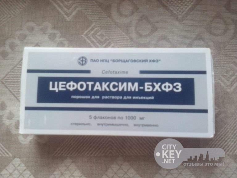 24262 ЦЕФОТАКСИМ-БХФЗ - Cefotaxime