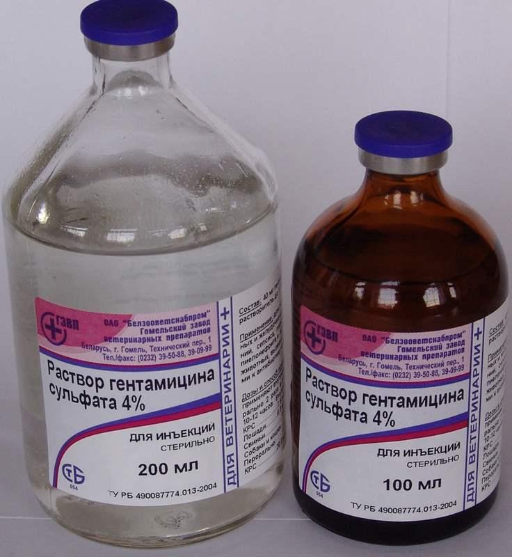 5371 ГЕНТАМІЦИНУ СУЛЬФАТ - Gentamicin