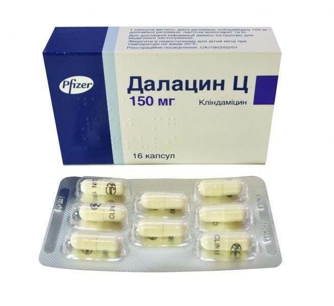 18470 ПУЛКСИПРОН - Clindamycin