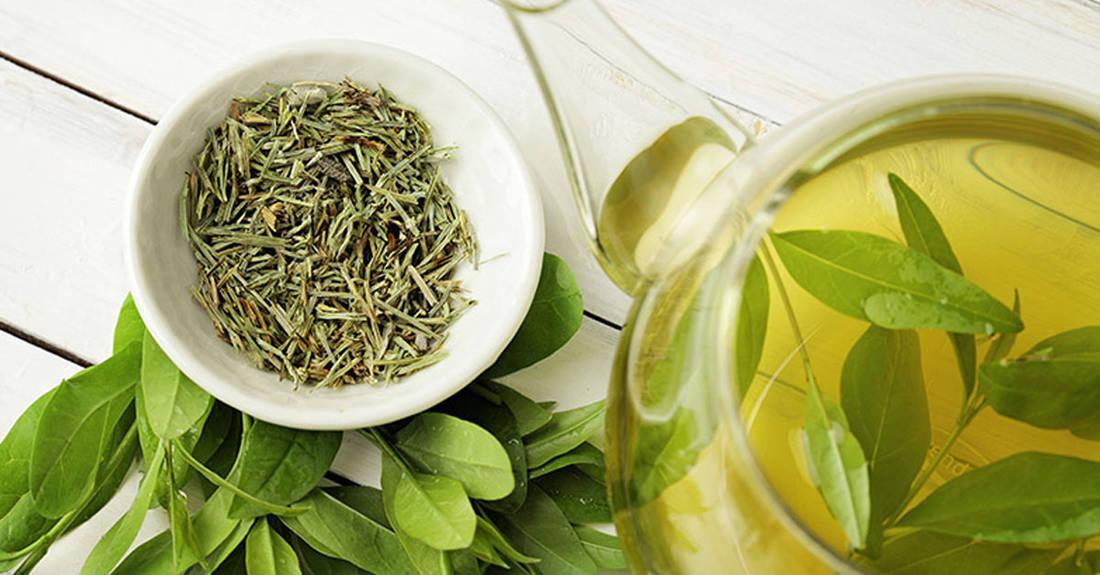 25331 5 свойств зеленого чая, которые помогут улучшить здоровье