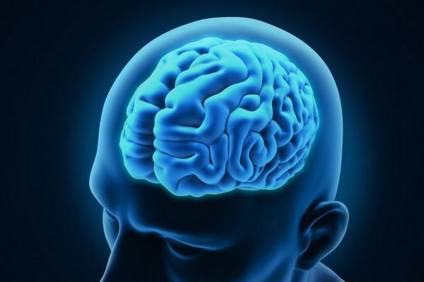 25447 Неврологи узнали, как COVID-19 проникает в головной мозг