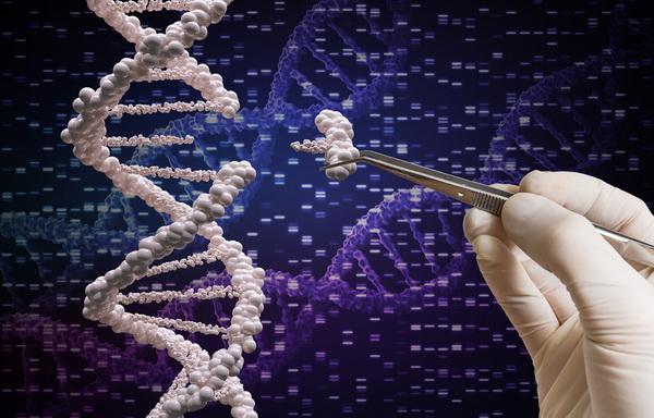 25623 Российские генетики обещают вылечить самые тяжелые недуги