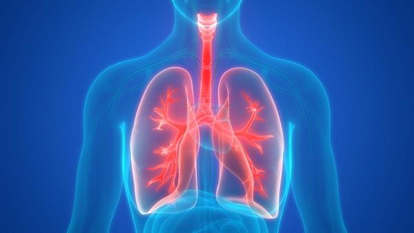 Найдены лекарства для профилактики рака легких