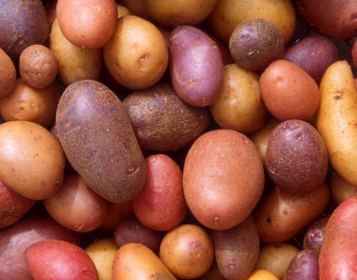 27251 Топ-6 фактов о пользе картофеля