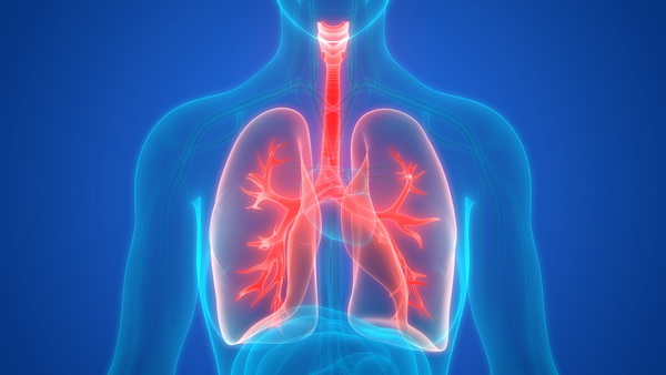 27910 Российские ученые представили уникальную систему для вентиляции легких
