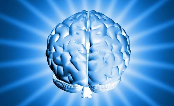 28204 Действительно ли мы используем лишь малую часть мозга?