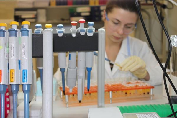 28440 Новое лечение уничтожает раковые опухоли головы и шеи, показало клиническое исследование